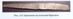 Рис.115 Орнамент на пластині браслета